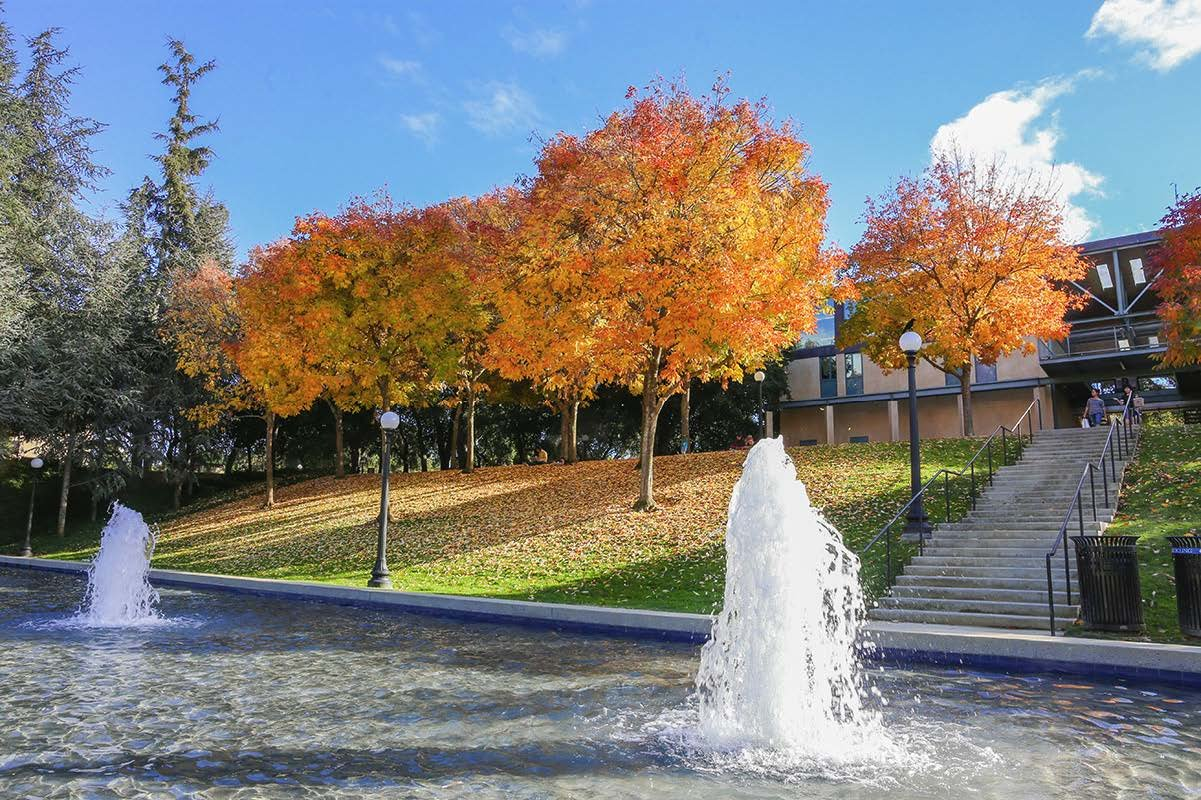 Terman Fountain at Stanford, with a backdrop of autumn trees